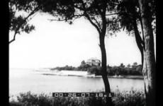 L'isola di Brioni nell'Adriatico